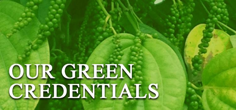 green-banner